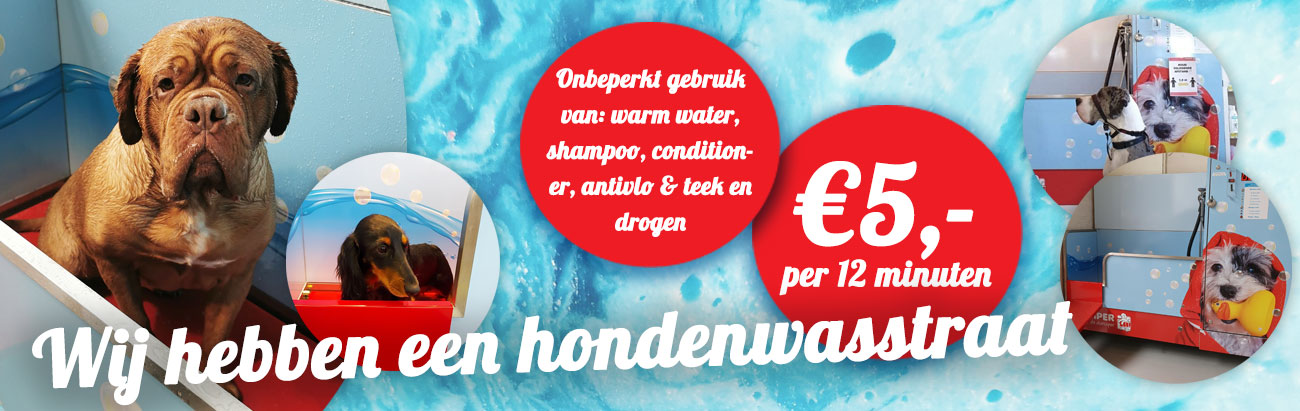 hondenwasstraat-jumper-de-diersuper-website